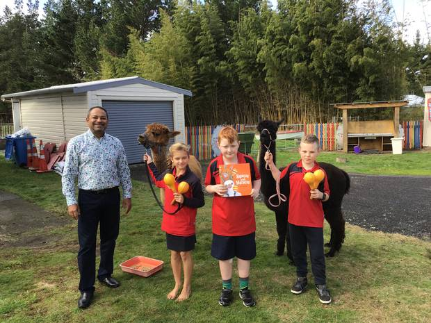 Alpacas Chicory and Toffee are fed by Ōhinewai School students Olivia Thompson, Taylor Gardiner and Kalvin Muncaster, with school principal Nesan Govender (left). Photo / Supplied